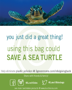save a turtle